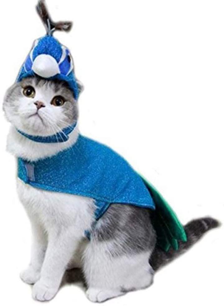 ペット 服 猫 コスプレ 孔雀 ハロウィン 仮装 着ぐるみ インスタ映え ブルー