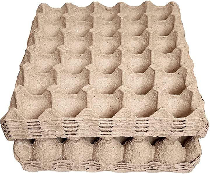 卵トレー 卵パック 紙製 コオロギ デュビア 昆虫飼育 10枚セット