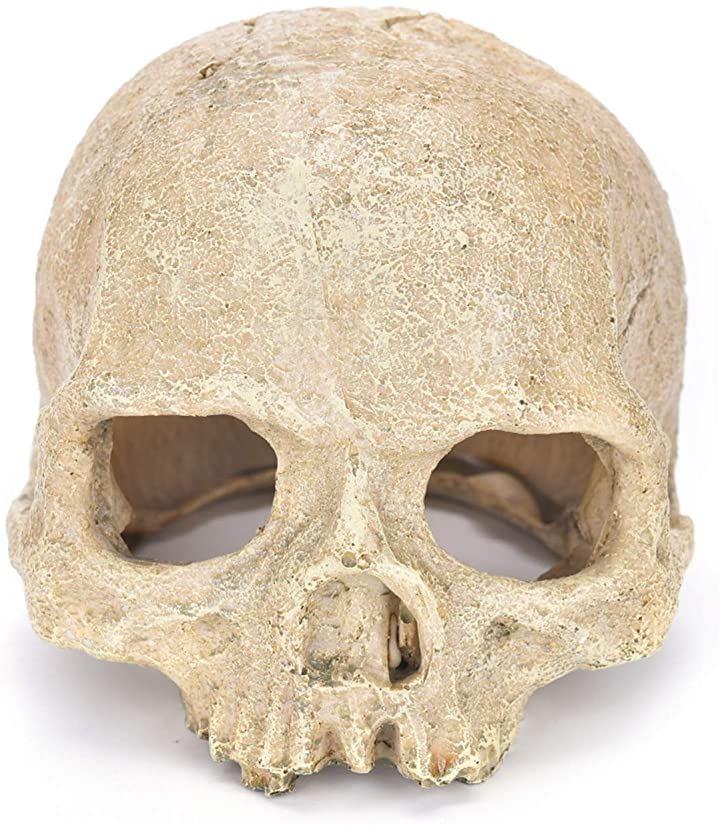 隠れ家 爬虫類 スカル 頭蓋骨 シェルター 水槽 飼育 アクアリウム オブジェ